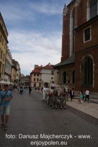 Krakow_svensk_guide