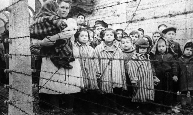 Auschwitz_tur_svenska