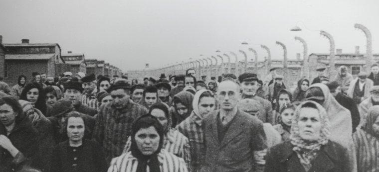 besok_i_Auschwitz