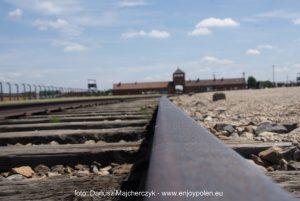 guidad_tur_till_Auschwitz