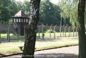 svenskguidad_tur_Auschwitz