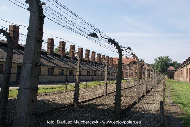 Auschwitz-taggtråd inhängnaden